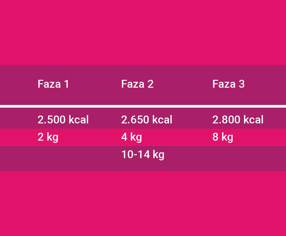 Prikaz povećanih kalorijskih potreba u trudnoci